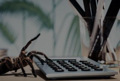 ¿Tienes dificultad para mantener en equilibrio los pagos y los cobros de tu empresa?
