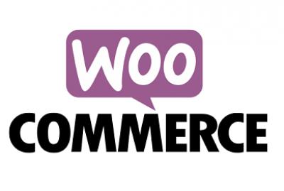 Integração Drive FX com WooCommerce